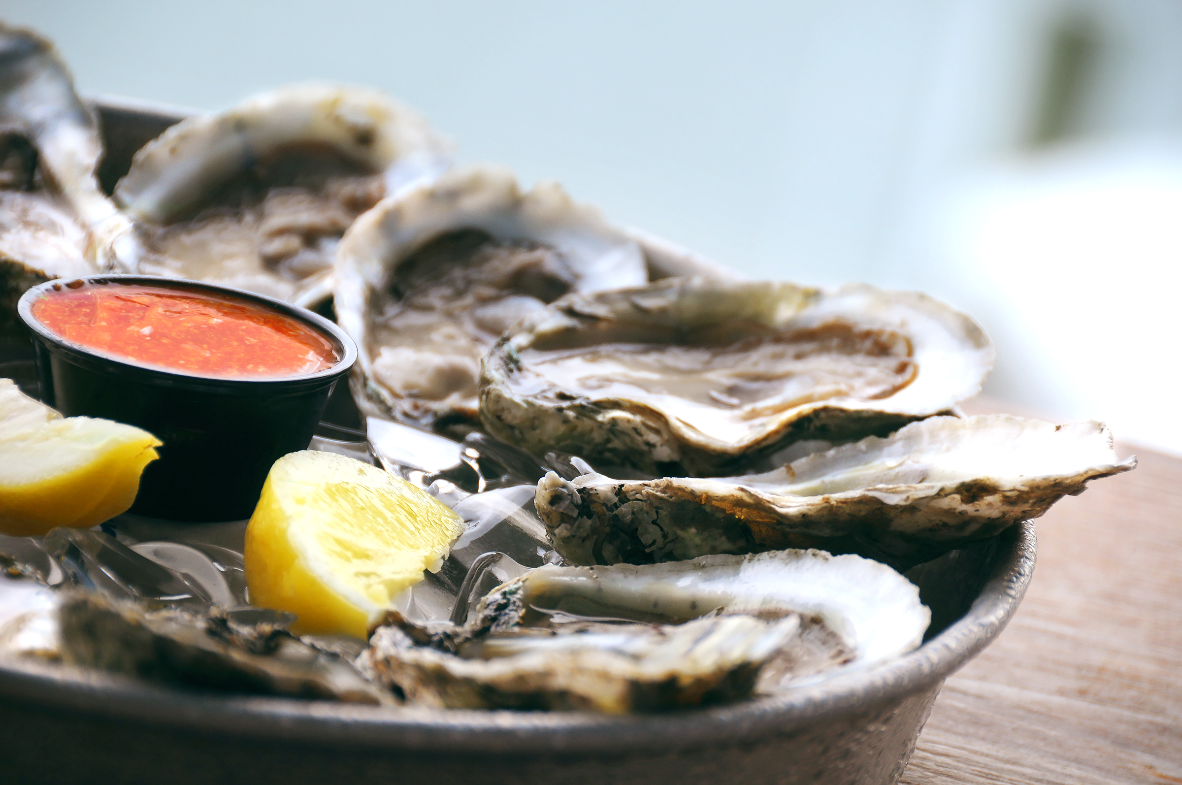 Close up plate of oysters